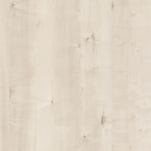4643-white-birch-new