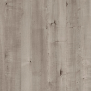 4645-grey-birch-new
